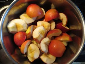 Quartered apples, ready for reduction
